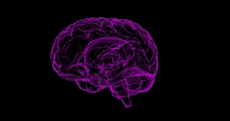 Brain Memory Nootropics Information Blog