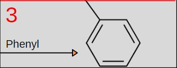 phenylpiracetam piracetam