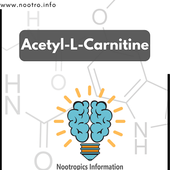 Acetyl-L-Carnitine: Benefits, Dosage, Side Effects