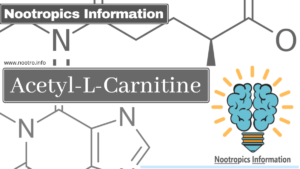 Acetyl-L-Carnitine (ALCAR) 1