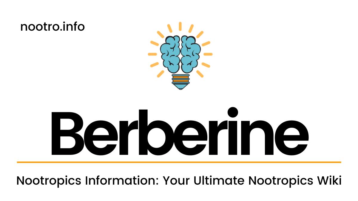 Berberine Nootropic Review for Nootropics Information Dubai, UAE